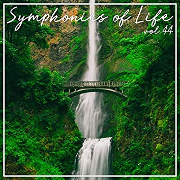 Symphonies of Life, Vol. 44 - Brahms: 41 Lieder