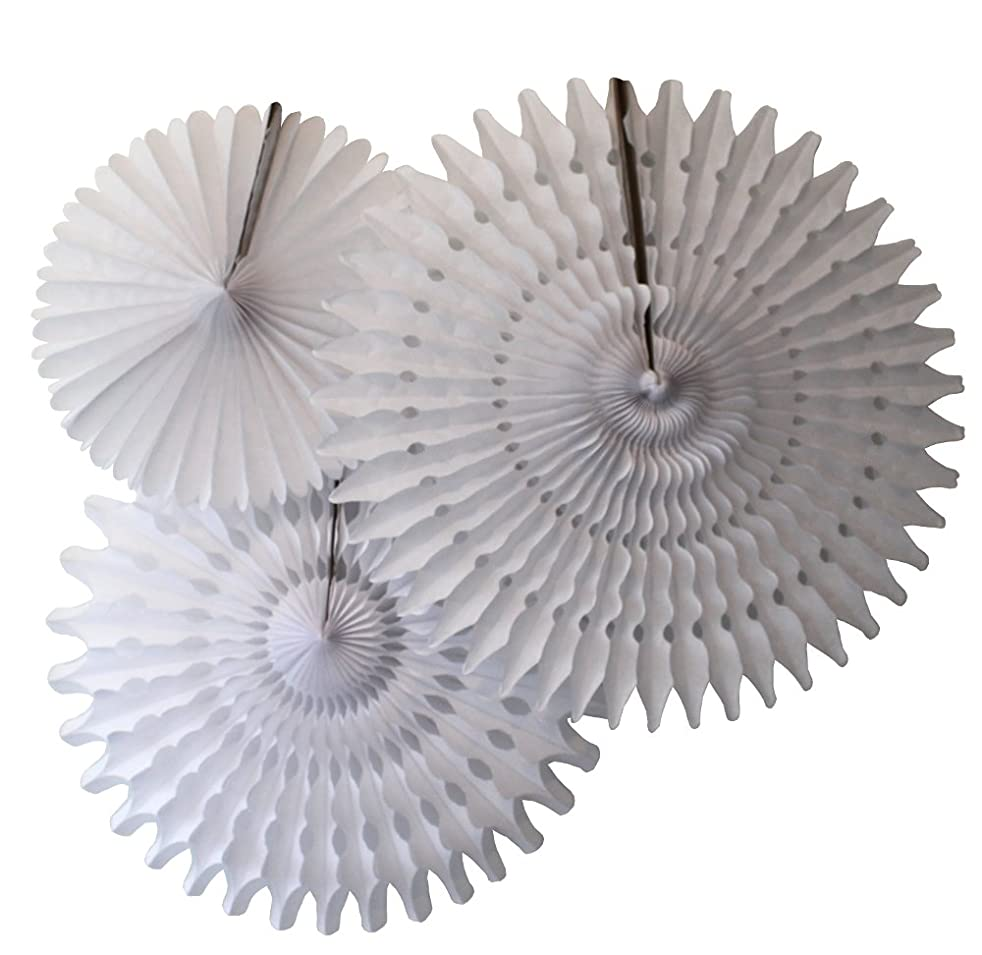 Hanging Honeycomb Tissue Fan, White, Set of 3 (13 inch, 18 inch, 21 inch)