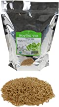2 Lb Organic Non-GMO Whole Oat Grain Seeds (With Husk Intact) - Oats Seed Grains, for Sprouting, Oat Grass, Animal Feed, S...