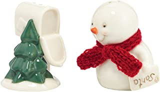 Department 56 Snowpinions Mailbox Salt and Pepper Shaker, 2.5 inch