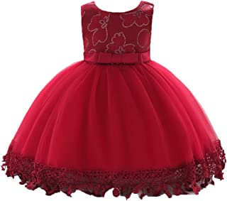 0254351f110f Amazon.com  3-6 mo. - Special Occasion   Dresses  Clothing
