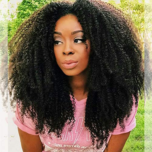 Afro hair wigs for black women _image0