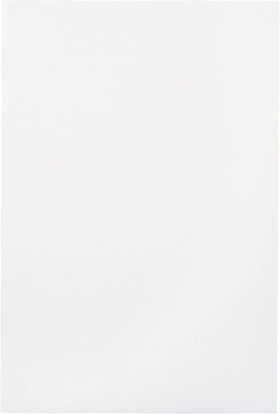 White School Smart Folding Bristol Tagboard 9 x 12 Inches Pack of 100-085520