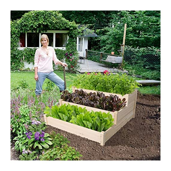 YAHEETECH 3 Tier Raised Garden Bed Wooden Elevated Garden Bed Kit for Vegetables Outdoor Indoor Solid Wood 49 x 49 x 21… 4 Useful & Practical – With this helpful planter, you can cultivate plants like vegetable, flowers, herbs in your patio, yard, garden and greenhouse, and make them more convenient to manage. 3 TIERS DESIGN: This elevated planter provides 3 growing areas for different plants or planting methods. Each tier is connected with wood plugs, which allows this 3-tier garden bed to be easily transformed into 3 single separate growing beds in different sizes if needed. Customizable design – This elevated planter provides 3 growing areas for different plants or planting methods. Each tier is connected with wood plugs, which allows this 3-tier garden bed to be easily transformed into 3 separate growing beds in different sizes if needed.