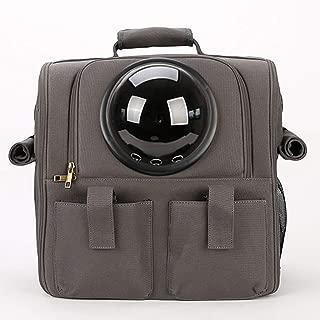 Double Shoulder Pet Cage Portable Pet Travel Bag Good Breathability and Comfort 38×26×38cm CQOZ (Color : Black)