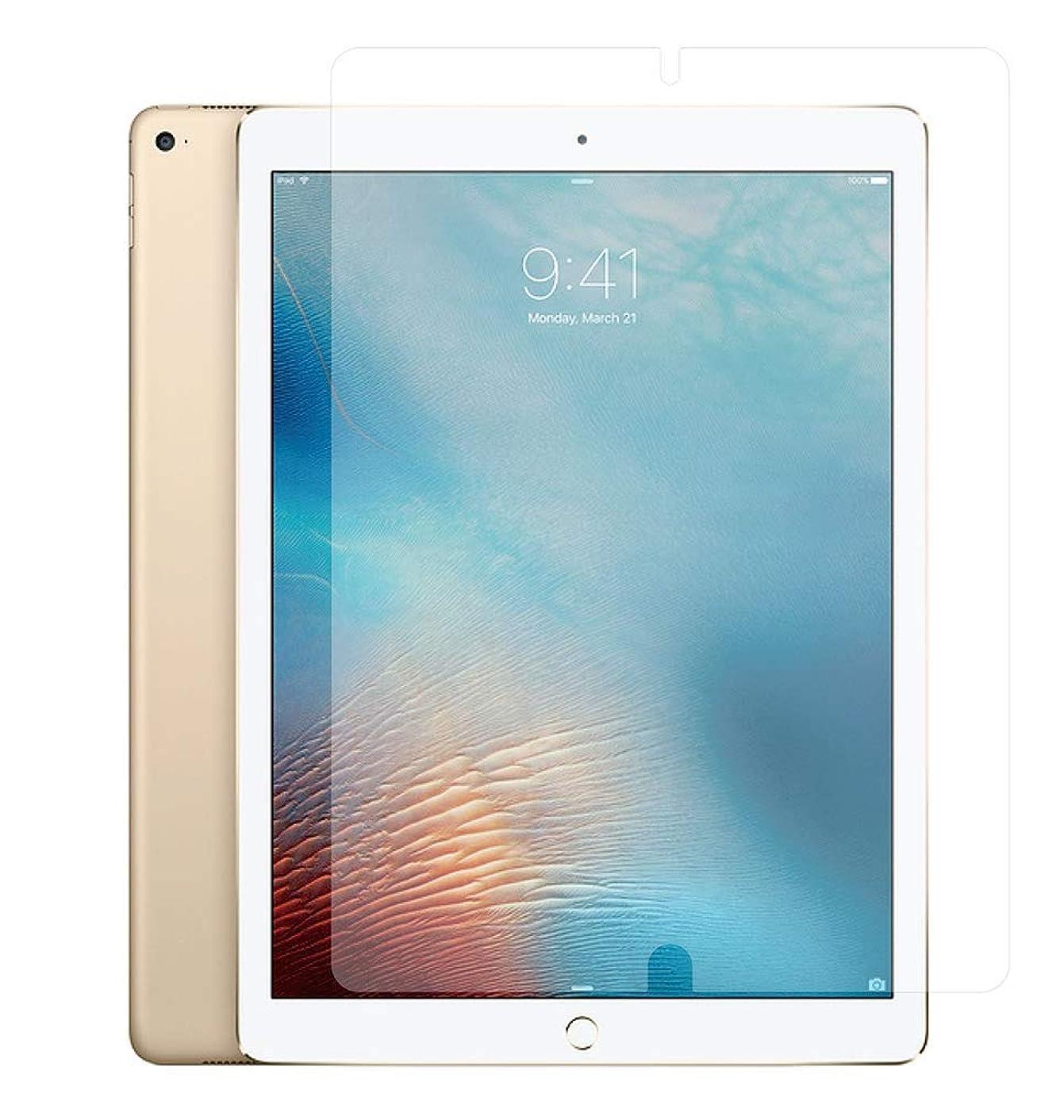 特許目に見えるワンダーAPPLE iPad Pro 12.9インチ 2017年 / 2015年モデル 用【書き味向上ソフトタイプ】液晶保護フィルム ペーパーライクなペン滑り!