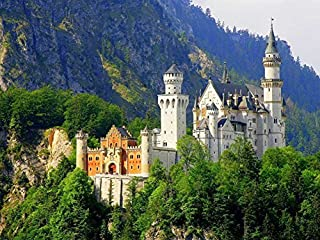 Best neuschwanstein castle oil painting Reviews