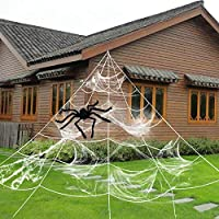 HYRIXDIRECT Halloween Spider Web Spider Decoration Triangular Mega Wed with Stretch Cobweb Set Outdoor Halloween Decorations Party Yard Decor (with Black Spider)