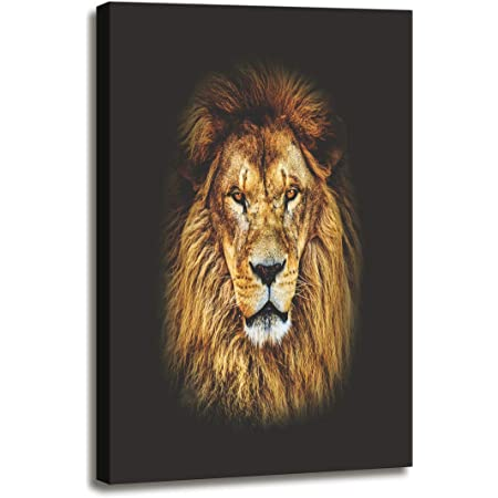 WILD AFRICAN LION CANVAS PICTURES WALL ART PRINTS NATURE PHOTO ANIMAL PRINTING