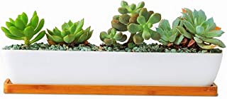 Best rectangular flower containers Reviews