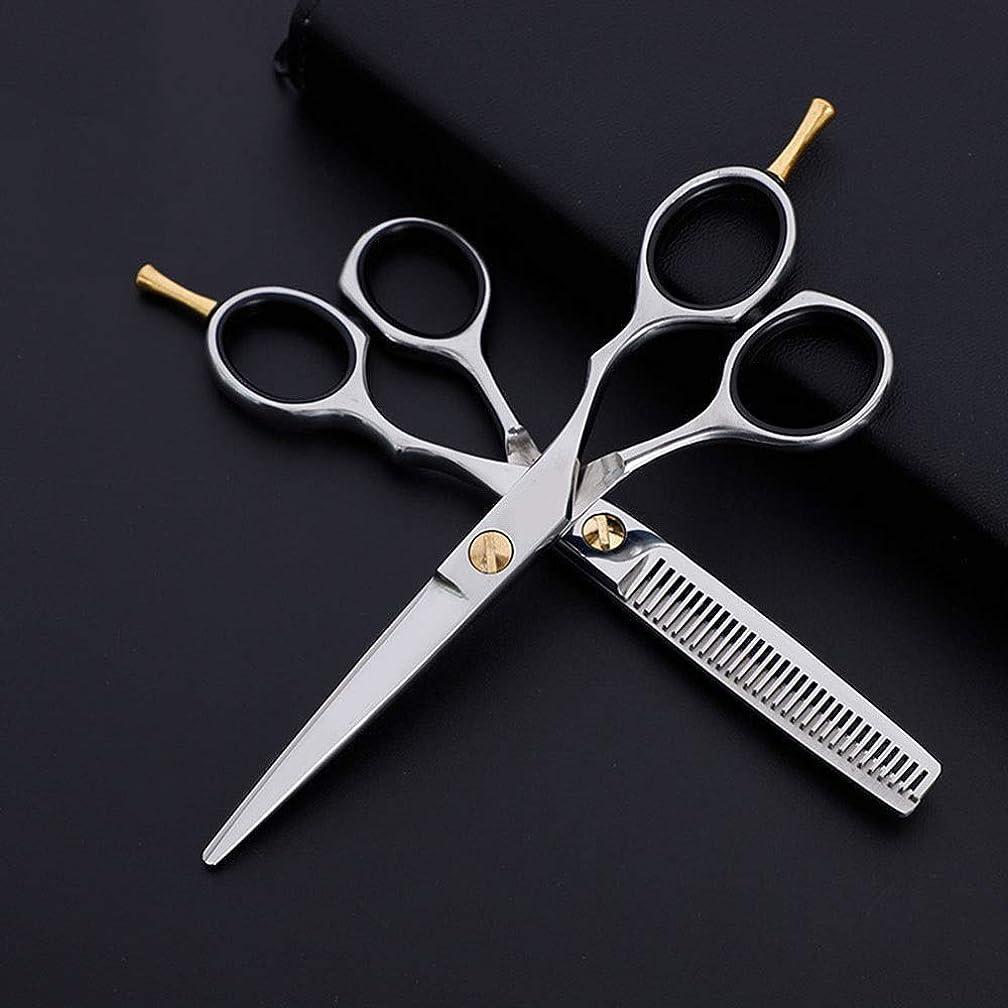 かりて内側ソーセージZYDP 6インチステンレス美容プロのカッティングセット、フラット+歯はさみクラシック斜めハンドル理髪はさみ (色 : Silver)