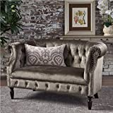 Christopher Knight Home Melaina Grey Tufted Rolled Arm Velvet Chesterfield Loveseat Couch
