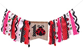 ladybug decorations for 1st birthday party