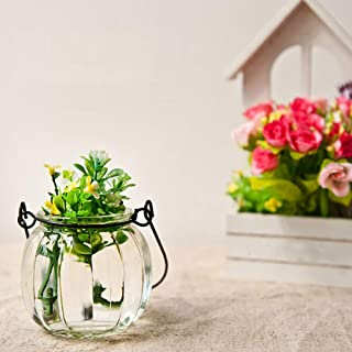 Pangxiannv Hanging Glass Ball Vase Flower Plant Pot Pumpkin Container Party Home Decor Pumpkin Glass Ring Vase Very Tall Floor Vases Purple Vase Orange Vase Decor Glass Vase Centerpieces