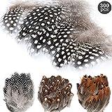 MWOOT 300 Stück Naturfedern braun Federn Indianer Federn basteln 5-13cm zum Basteln für...