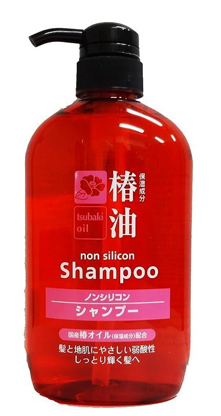 癌聞きます生産的熊野油脂 椿シャンプー 600ml