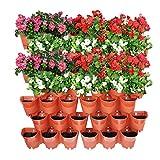 Worth Garden Terracota 14 Set Macetas de Flores Verticales de Plantas Auto-riego para balcón Patio Patio y Patio Trasero, 1 Metro Cuadrado de Pared de jardín