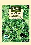 Seeds of Change S10739 Certified Organic Tres Fine Maraichere Endive