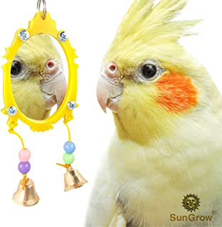 SunGrow Fancy Bird Toy Mirror with Bells, 11-inches (Height) 3-inches (Width), Plastic Edging and Beads, Colorful, Attractive and Easy to Install Pet Toy for Parakeets, Cockatoos, Canaries