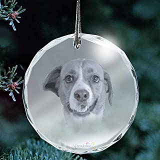 Goodcount.com Custom Etching Photo Crystal, Laser Engrave Picture in Glass Ornament (XL - 3