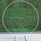 WUKANG Fondo De Arco De Boda Arco Redondo Decoración De Marco De Arco De Círculo De Metal, Soporte Redondo Globos Soporte Puerta para Decoración De Bricolaje. 2,5M / Blanco