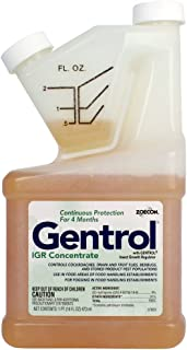 Best gentrol insect growth regulator Reviews