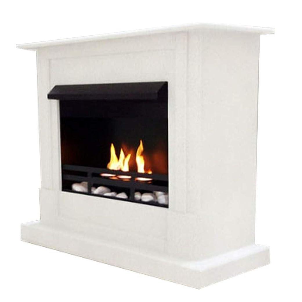 好色なカナダ前投薬ジェル+ ethanol fire-places Emilyデラックスinclusive : 1調節可能なstainless-steel Burner ホワイト 10080