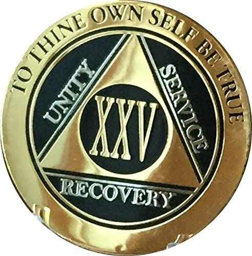 Long-awaited RecoveryChip 25 Year AA Medallion Silver List price Elegant Bi-P Black Gold