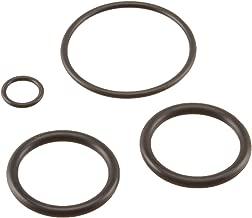 Pentair 273109 Noncorosive Slide O-Ring Replacement Kit