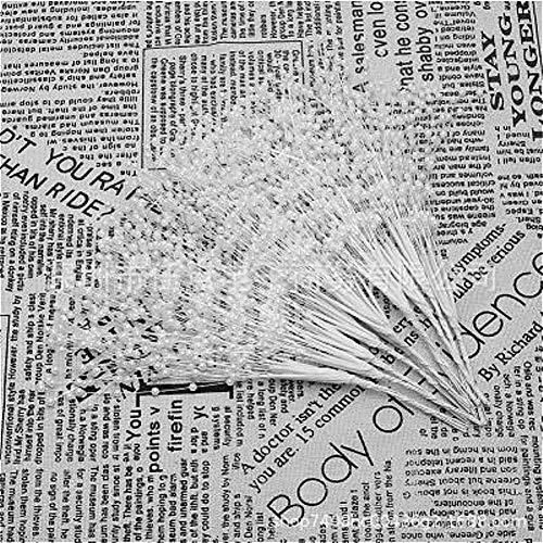 Kunstmatige & Droge Bloemen Pearl Star Takjes Bridal Artificial Gedroogde bloemen Boeket van het huwelijk Boeket Decoration DIY Bloemschikken Accessoires (Color : F, Size : 10PCS)