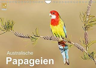 Australische Papageien (Wandkalender 2022 DIN A4 quer)