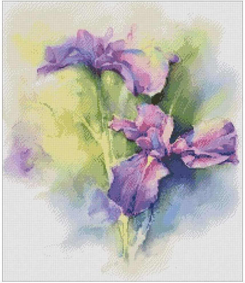Watercolor iris Patterns Counted 11CT Set Stitch Cross shop Max 51% OFF 14CT DIY