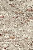 Rasch 939323 - Papel pintado no tejido con aspecto de piedra, 10,05 m x 53 cm (largo x ancho), color beige