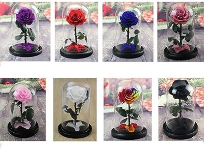 HLDBW Flor eterna Cristal de la bóveda Inmortal Hecha a Mano Rosas Artificiales de Rose Regalo Decorativo Perfecto for el día de San Valentín de la Novia de la Madre de cumpleaños Multicolor Opcional