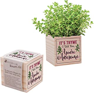 Desk Accessory for The Office - Plant Seed Packet, Peat Pellet, Wooden Cube Planter with Unique Design - Appreciation Gift...