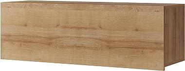 DOMTECH Meuble de salon moderne à suspendre en chêne doré