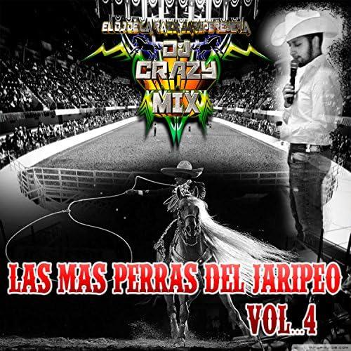 Dj Crazy Mix