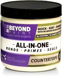 Beyond Paint Counter Top Paint, Pint, Ash