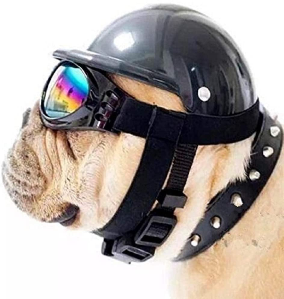 Washington Mall ShopTrend Dog Hat with Cap Goggles Bike Riding Cash special price