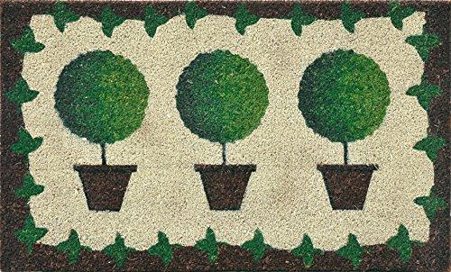 Verdemax 5463 - Zerbino rettangolare con piante, 45 x 75 cm