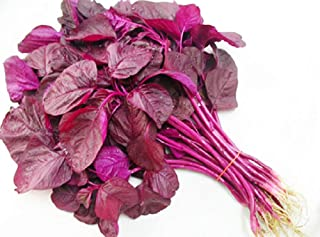 Chinese Multicolor Leafy Greens Red Amaranth Seeds 3g for Planting Outside Door Cooking Dish Soup Salad Taste Delicious Harvest Days: 35days (Red Amaranth)