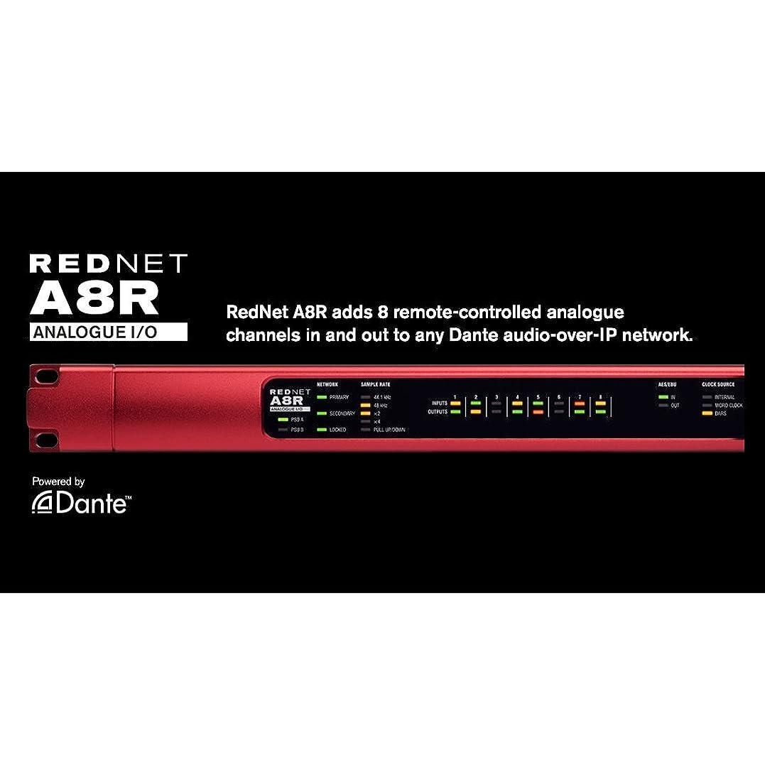 国勢調査れんがズームFocusrite RedNet A8R オーディオインターフェイス フォーカスライト