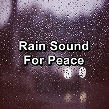 Rain Sound For Peace