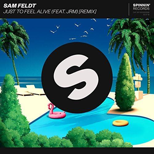 Sam Feldt feat. JRM