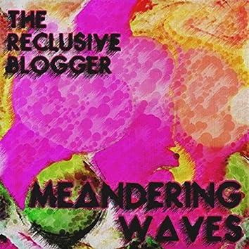 MEANDERING WAVES