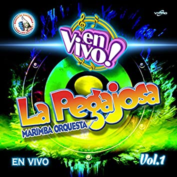 En Vivol Vol.1. Música de Guatemala para los Latinos (En Vivo)