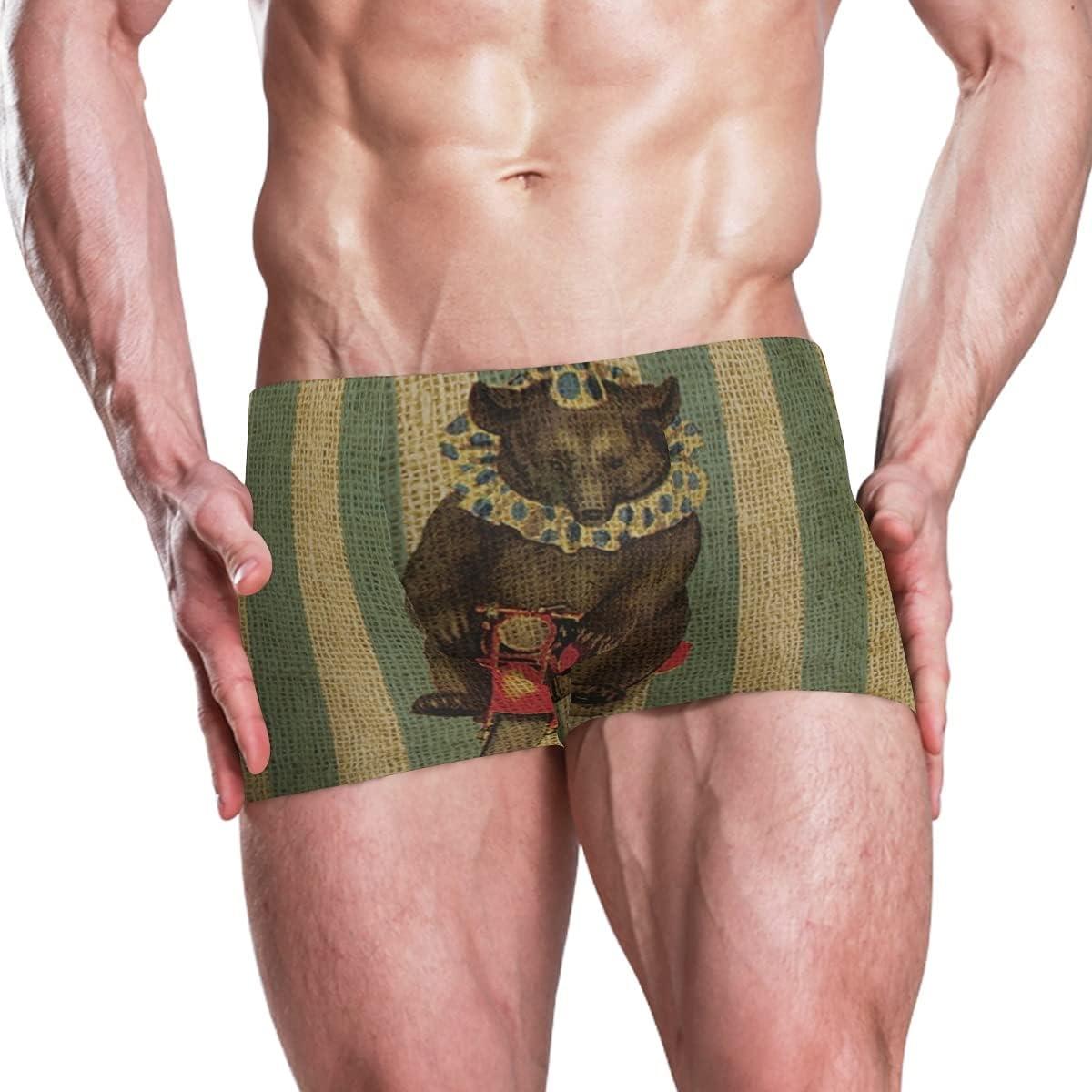 Boxer Swim Trunks Inexpensive for Men Cycle Bik Bath Swimsuit Max 49% OFF Bears Swimwear