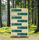 Einstreu Pferdeeinstreu Boxengold® Premium Ecostreu Pferd 24 Ballen á 20kg pro Palette (=480 kg) Tiereinstreu | Grundpreis (0,59 €/kg)
