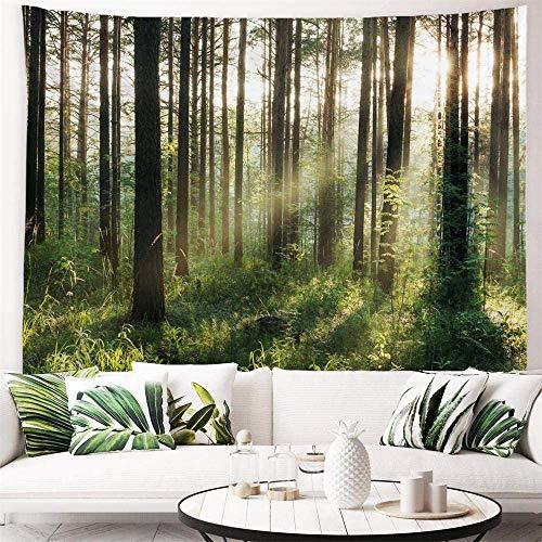 YeeATZ Tapiz de tela de poliéster para colgar en la pared, decoración de pared para dormitorio, dormitorio, sala de estar, clavo incluido – 150 cm de ancho x 100 cm de alto – Bosque de luz solar