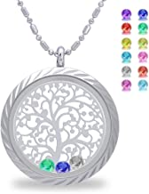 Birthstone Tree of Life Necklace, Screw Open Floating Charm Locket, Included 24 Birthstones & 2 Family Tree Plate, Birthday Gifts for Mom, Mother, Grandmom, Daughter, Son